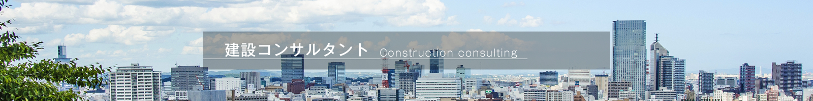 construction-consulting